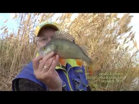 рыбалка с павлом сумским видео