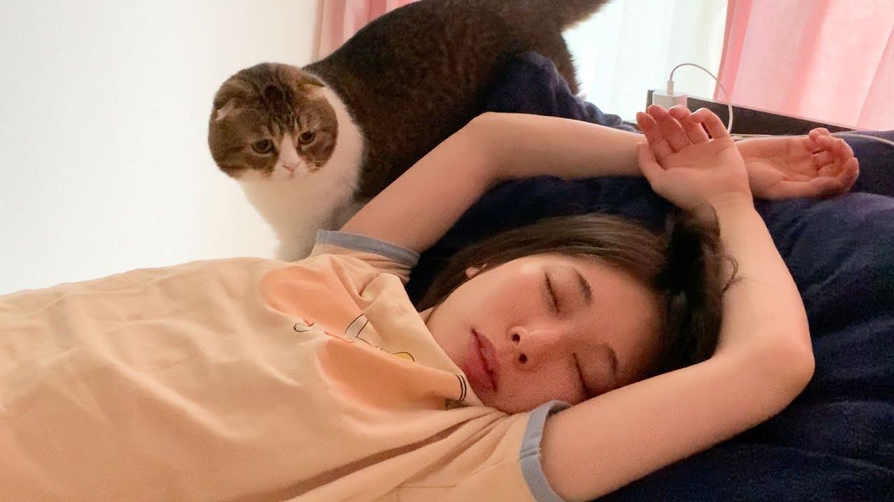 🐈夜更かししたママVS絶対に起こす猫