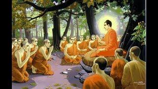 Alan Watts- Escaping the Trap-.Dharma Talks
