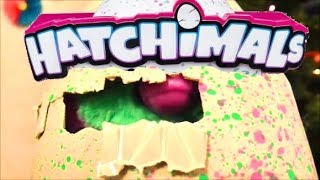 Hatchimals Baby Giant Interactive Eggs that Hatch + Surprise Blind Bag Egg with Miss Lana