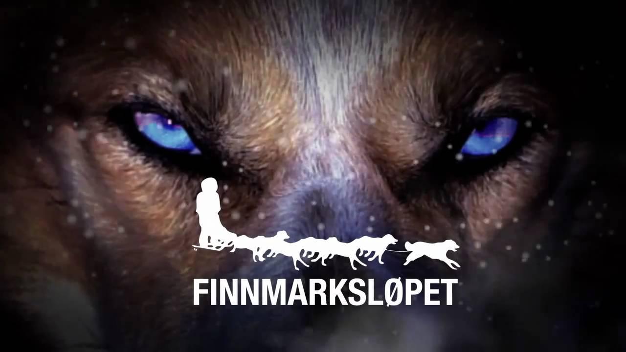 Resultado de imagen de finnmarkslopet