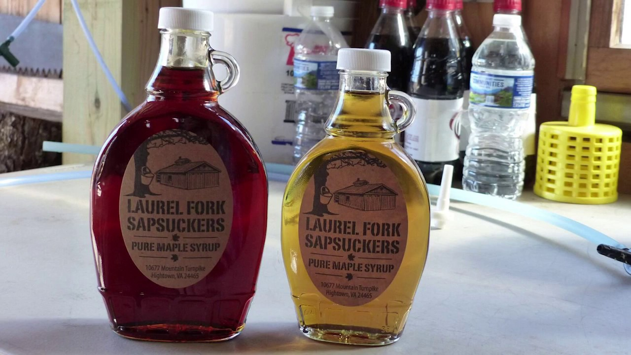 join west virginia u0027s growing maple syrup industry youtube