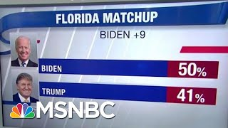 New Poll Shows Biden And Other Democrats Beating President Trump In Florida | Hardball | MSNBC