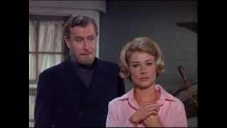 The Ghost & Mrs. Muir - [S1E10] - The Monkey Puzzle Tree