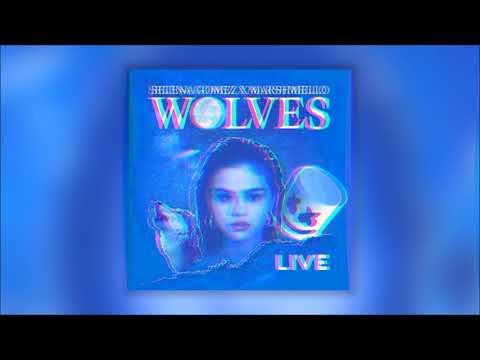 Selena Gomez - Wolves Live at the AMA's [3D](Studio Version)