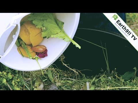Compostable vs Biodegradable vs Recycable