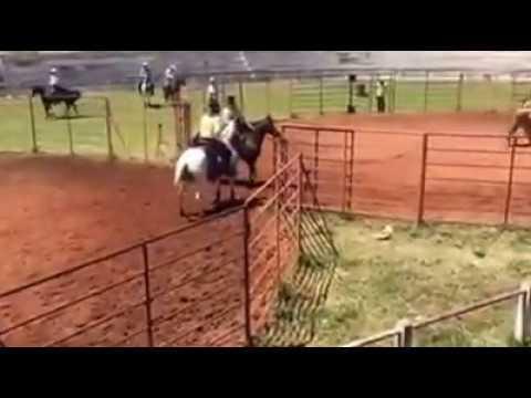 3°L na1° etapa do Campeonato de Ranch Sorting da Liga Leste Paulista em Cajuru/SP