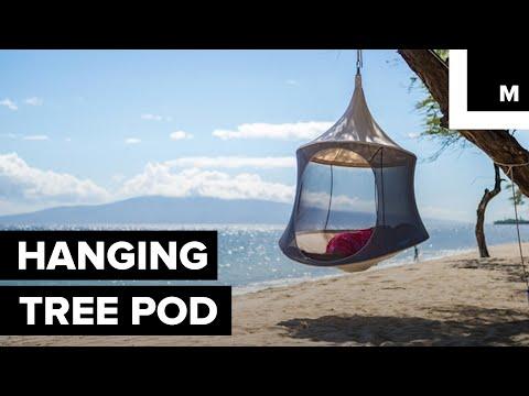 Hanging tree pod