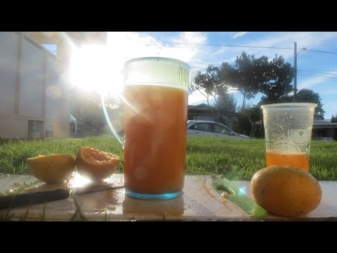 ASMR Squeezing Fresh Orange Juice With Oranges From my Tree.