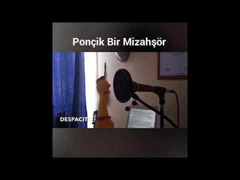 Despacıto Ördek Cover (Despacıto Duck Cover)