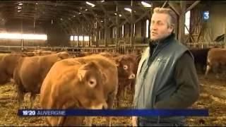 Quinzaine du conseil en élevage