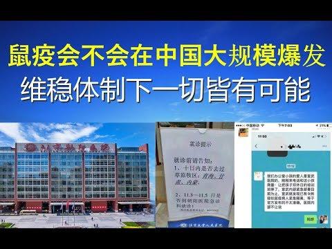政论:鼠疫会不会在中国大规模爆发?维稳体制下一切皆有可能(11/16)