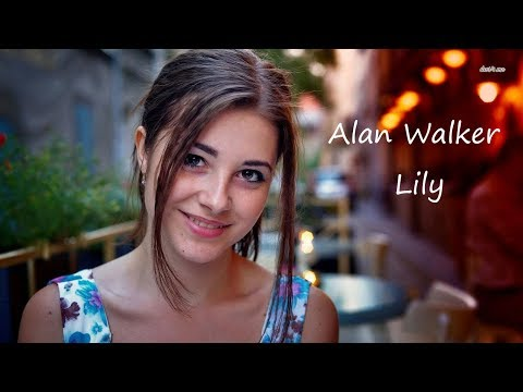 alan-walker,-k-391-&-emelie-hollow-lily-(lyrics)