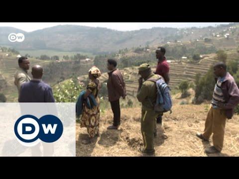Rwanda's Rugezi Marsh - a source of life   Global 3000