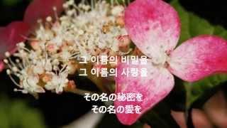 韓国語歌詞和訳・・・当教会、牧師 日本語歌詞・・・・・Glory7 ...