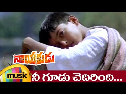 Nayakudu Telugu Movie Songs | Nee Gudu Chedirindi Music Video | Kamal Haasan | SPB | Ilayaraja