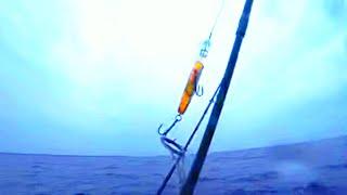 Окунь Щука Плотва Рыбалка с лодки на озере