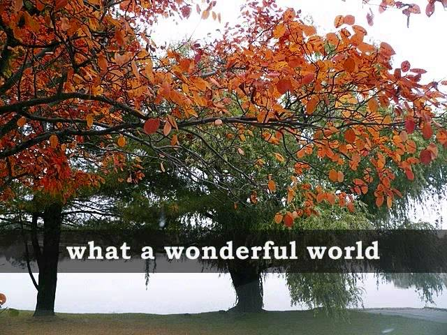 WHAT A WONDERFUL WORLD - Louis Armstrong (Lyrics) Travel Video