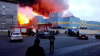 "Пожар, горит ""Лента"" на Обводном канале."