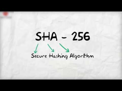 Bitcoin Hash Rate in Secure Hashing Algorithm - Cartoon