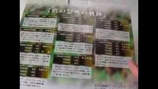 杉内俊哉 離婚 が話題!☆ソフトバンクホークス BBM ベースボールカード ...