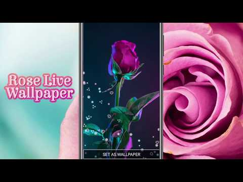 Rose Live Wallpaper Apps On Google Play,Dirty Things To Do In The Bedroom