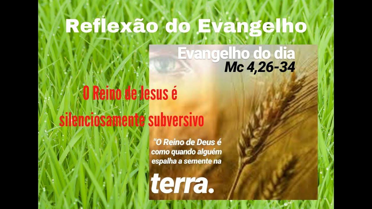 """Reflexão do Evangelho: """"O Reino de Jesus é subversivo e revolucionário!"""""""