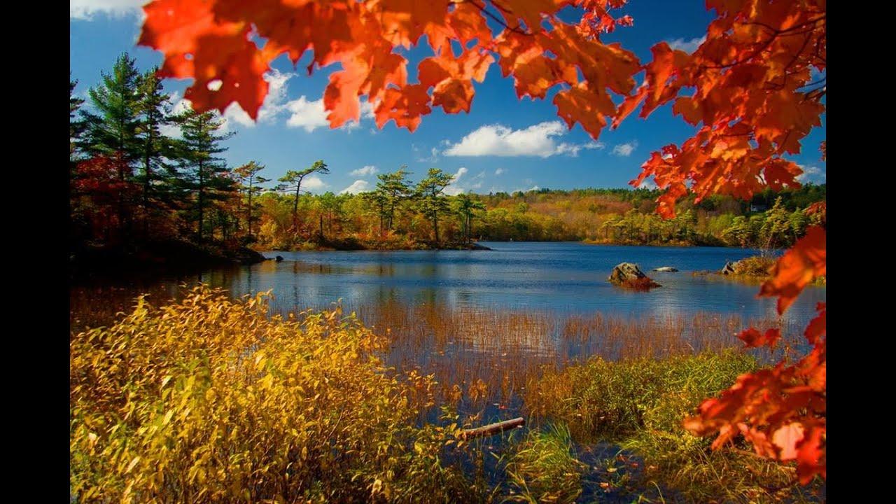 L 39 automne et ses couleurs youtube - L automne et ses couleurs ...