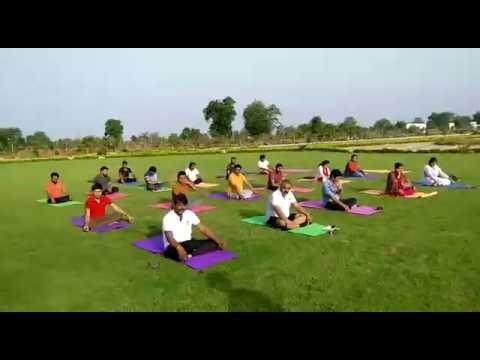 international-yoga-day-2020