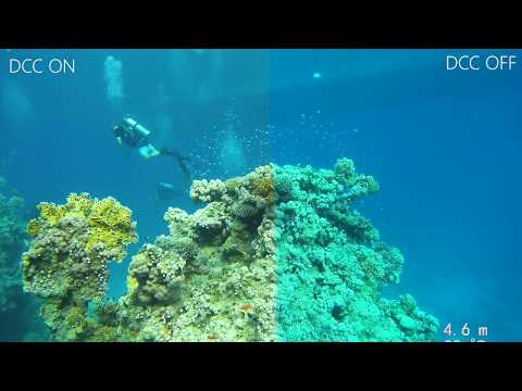 2 Minute Run-down of the Paralenz Dive Camera