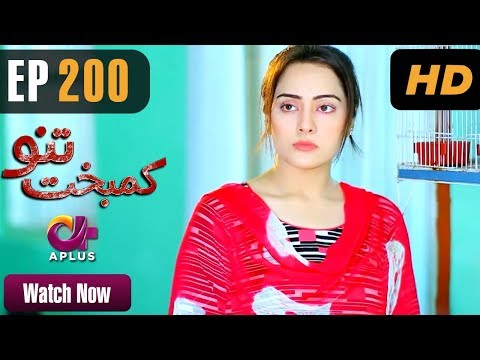 Kambakht Tanno - Episode 200 - A Plus ᴴᴰ Drama