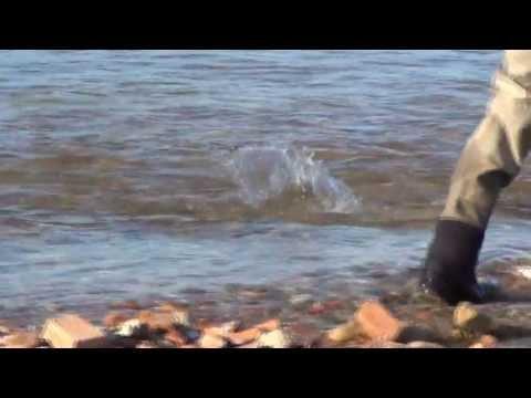 Ekaluk River 2013 - 16/8 - 4/9 - arctic char fishing