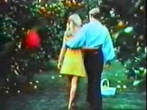 Love's Fresh Lemon TV Commercial - 1970