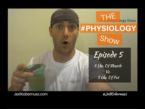 5-lbs.-of-fat-vs.-5-lbs.-of-muscle- -the-#physiology-show-episode-5