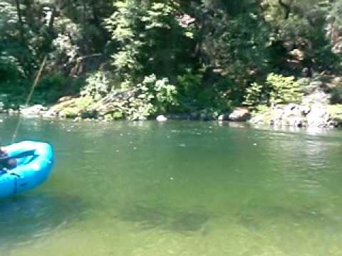 Upper Sacramento River Fly Fishing Float Guide Trip