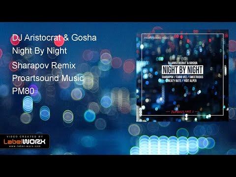 DJ Aristocrat & Gosha - Night By Night (Sharapov Remix)