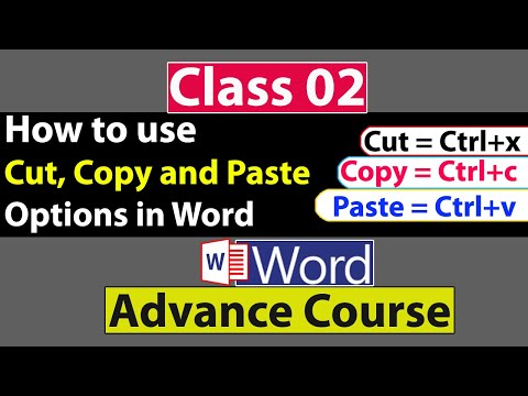 How To Use Cut, Copy And Paste Options In Ms Word In Urdu - Class No 02