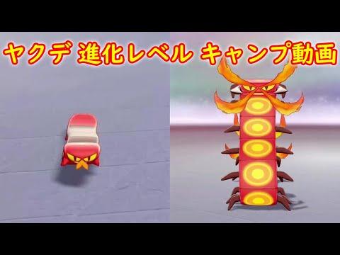 【ヤクデ → マルヤクデ】進化レベル 攻略 + キャンプで遊ぶ【ポケモン ソード シールド ポケモン剣盾】