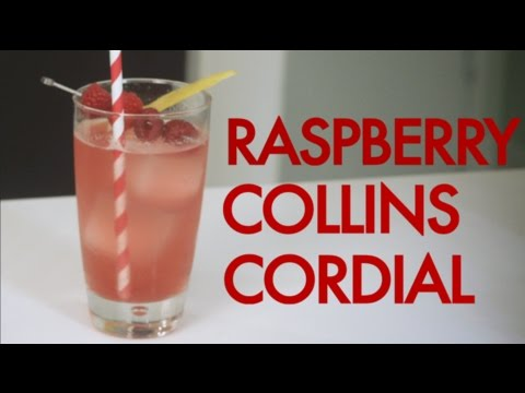 How To Make A Raspberry Vodka Collins Cordial | Drinks Made Easy
