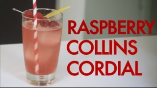 How To Make A Raspberry Vodka Collins Cordial -drinks Made Easy