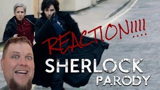 Sherlock Parody by The Hillywood Show REACTION!!!