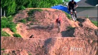 Expendable 3 BMX Video - Fox