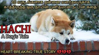 சாகும் வரை தன் எஜமானுக்காக காத்திருந்த நாய்|Tamil voice over|Hollywood movie Story & Review in Tamil