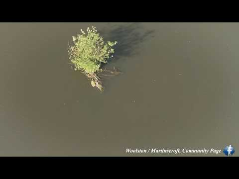 Woolston Flood Defence / Weir - 23/05/18