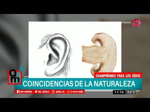 coincidencias-de-la-naturaleza