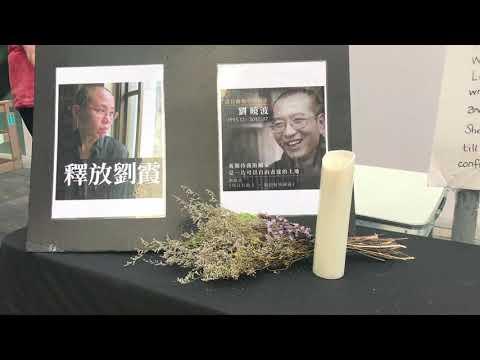 Liu Xia, widow of Chinese Nobel dissident Liu Xiaobo, arrives in Germany