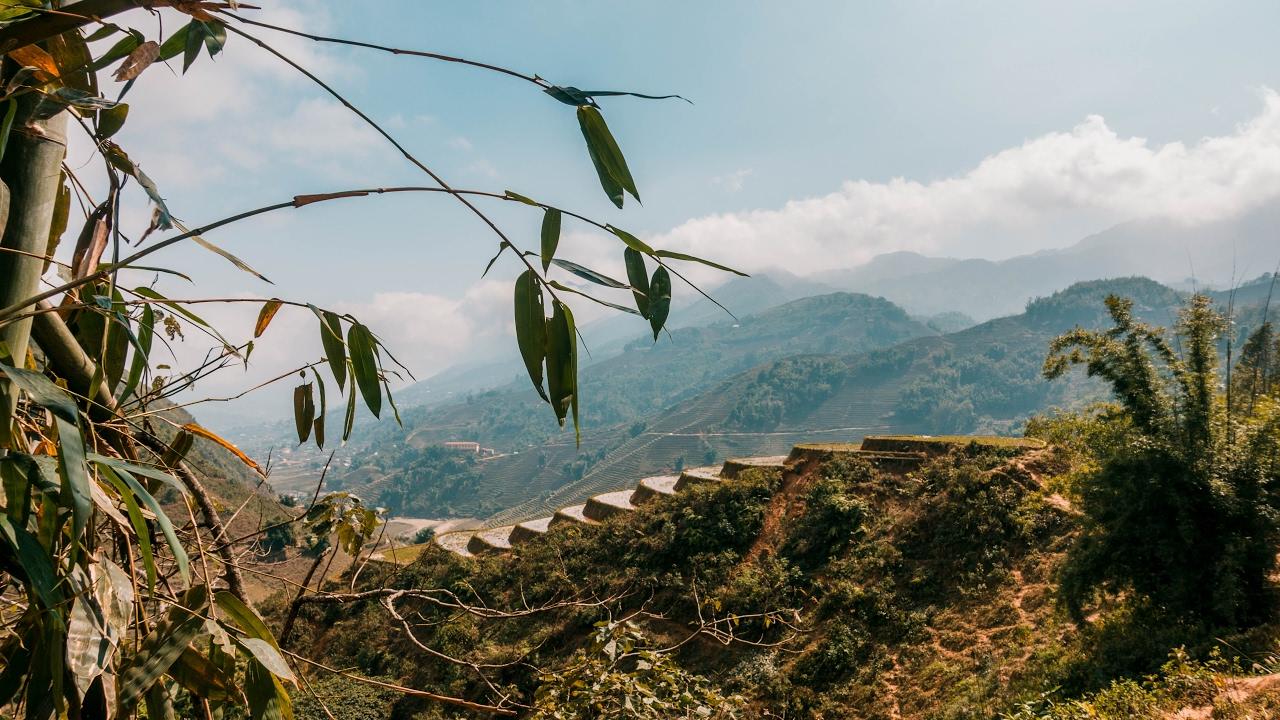 The STUNNING Rice Fields of Sapa, Vietnam