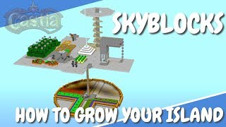 Minecraft SkyBlocks | How to go DOWNWARDS in Sky Blocks | CastiaMC Skyblock Lets Play with Avomance