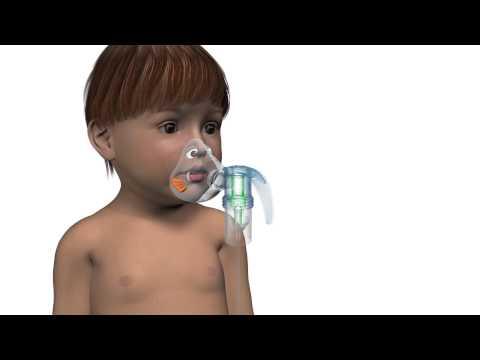 Bubbles Animation Fullscreen