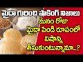 మైదాపిండి తినడం వాల్ల కలిగే నష్టాలు? - Maida Flour Losses For Health